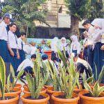 Pohon Mangga, Sukun, Durian dan Nangka Bisa Perindah Kota Jakarta